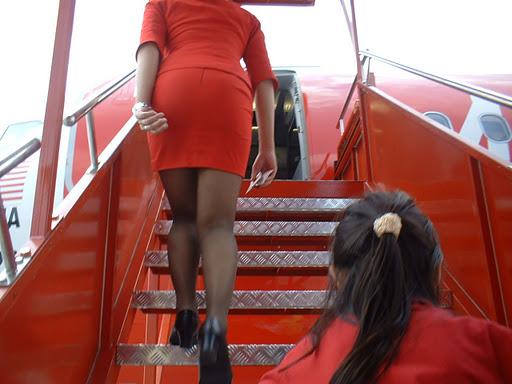 стюардесса фото под юбкой