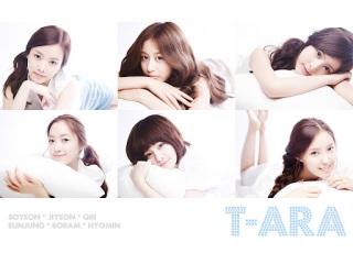 wallpaper t-ara